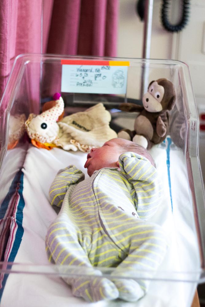holdens birth (5 of 15)
