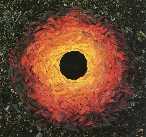 Goldsworthy Leaves